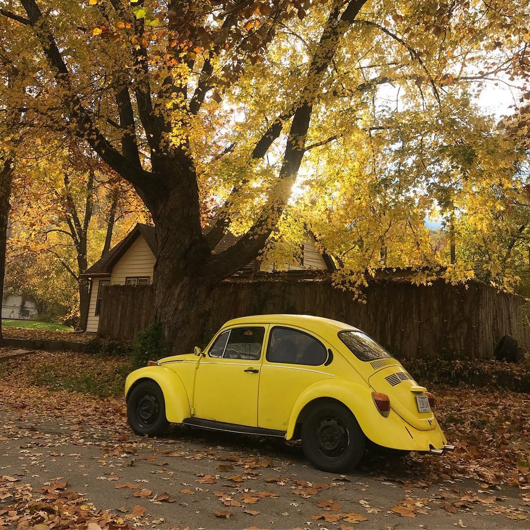 Unconventional Chassis Swap Idea, part 2: Beetle + Miata