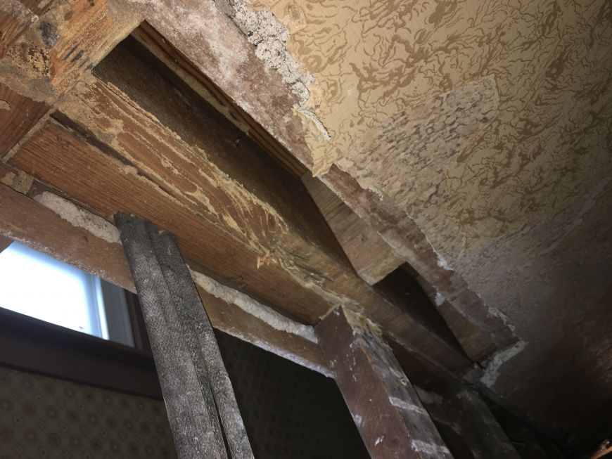 fixer upper house termite damage to wood framing lumber